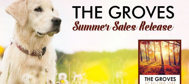 The-Groves-Summer-Sales-Release-10-10-17